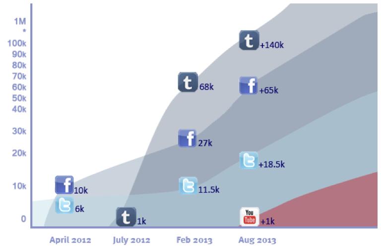 Social Media Graph 2013